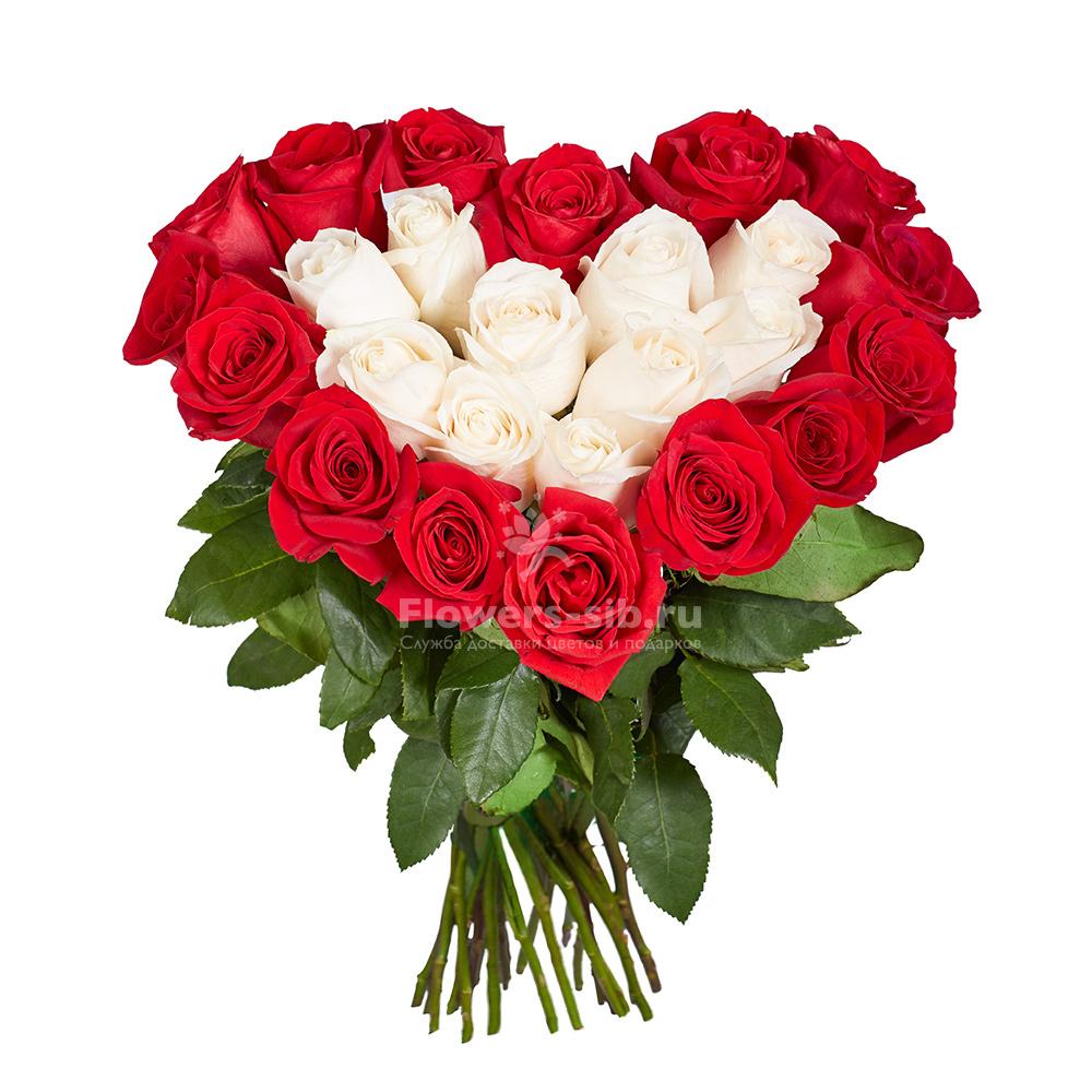 Г саратов цветов с доставкой, цветы в курске оптовый склад москва